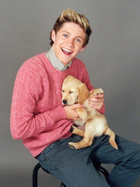 One Direction Cuddle Puppies For Wonderland Magazine Capital