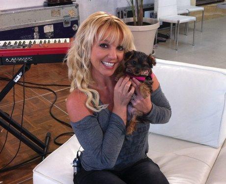 Britney Spears and dog Hannah