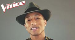 Pharrell The Voice