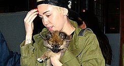 Miley Cyrus and New Dog