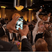 1. The #Cumberbomb to end ALL photobombs! Sherlock star at the Golden Globes