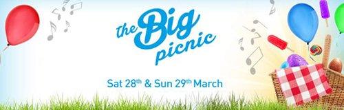 big picnic hero