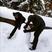 Image 8: Taylor Swift and Calvin Harris make a snowman